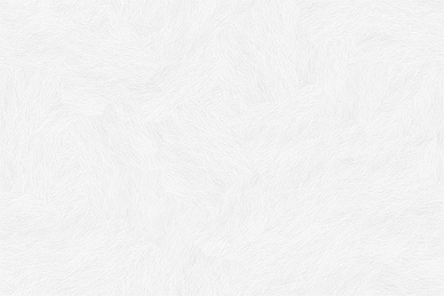 subtle_white_feathers.png